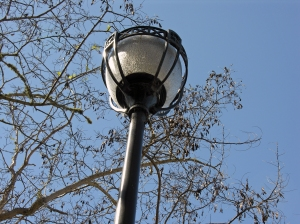 lamphigh