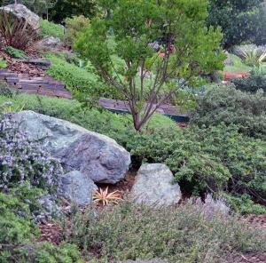 garden011500